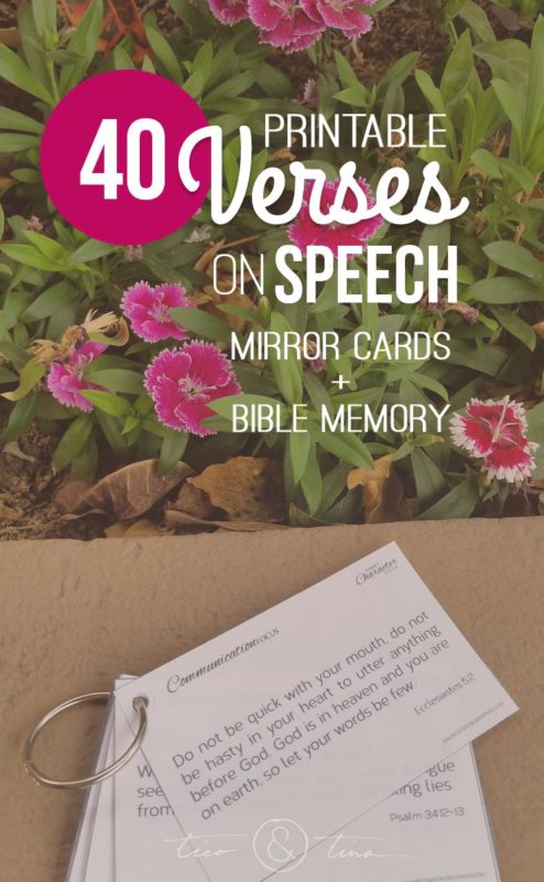 40 Printable Mirror Cards/Bible Memory Verses on Speech and Communication   Family Character Focus™