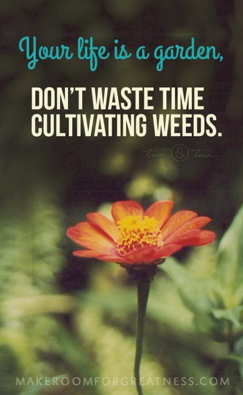 Your life is a garden, don't waste time cultivating weeds. ~Tico&Tina   MakeRoomforGreatness.com, simplify, minimalism